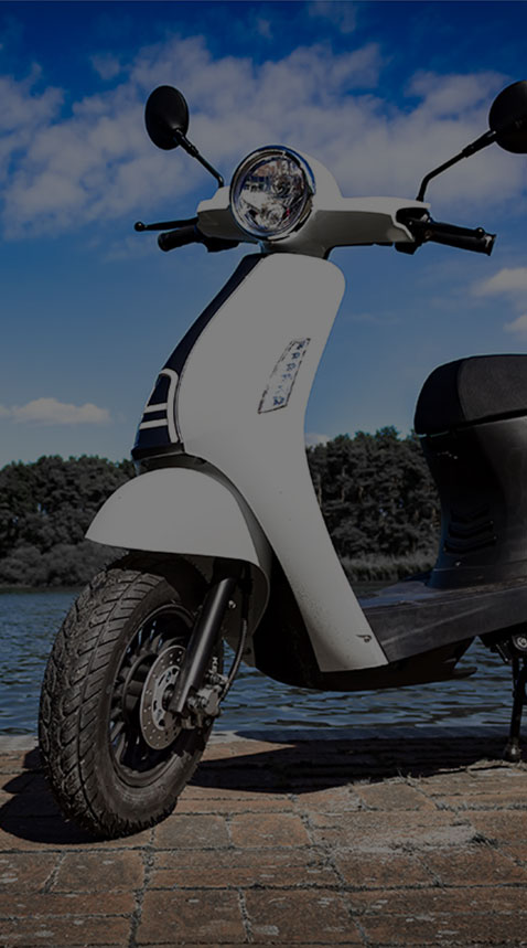Ugbest Electric Scooter